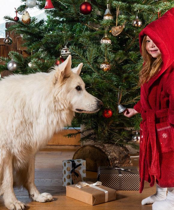 Noël 2019 : nos idées cadeaux pour toute la famille